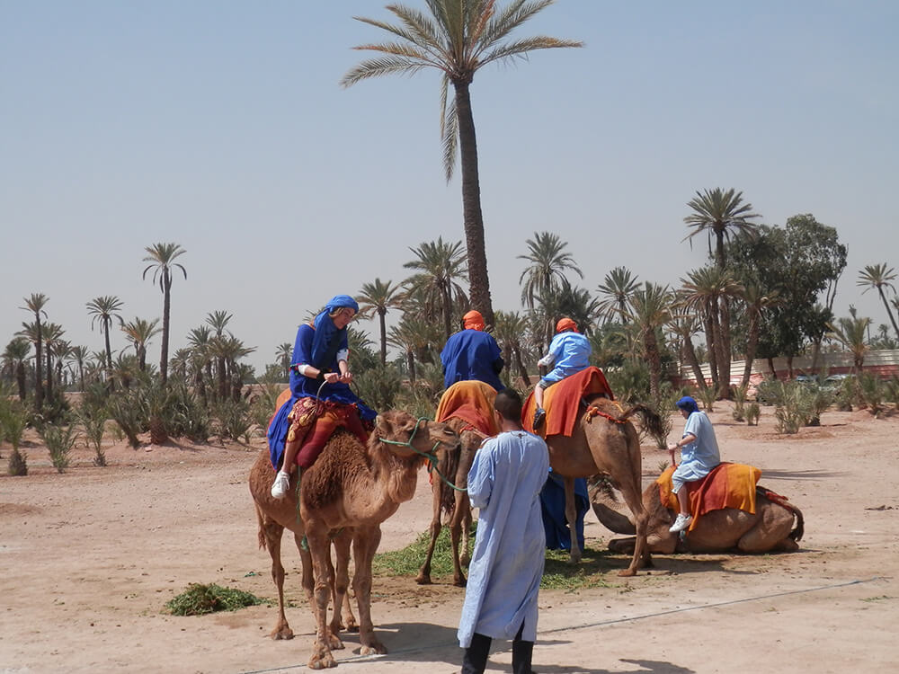 http://www.marrakechdream.ma/wp-content/uploads/2017/07/P4140019.jpg