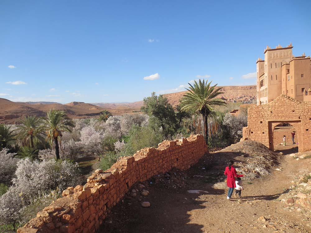 http://www.marrakechdream.ma/wp-content/uploads/2017/08/IMG_3309.jpg